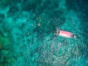 Coral island_519582340