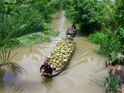 Mekong Delta boat transporting coconut
