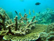 Phú Quôc Island (1)