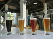Koh Samui Craft Beer Tasting