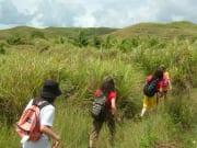 草原を歩く