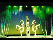 Chinese_Acrobats_and_Shanghai (4)
