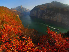 9381_Three_Gorges_Tour_by_Super_5Star_Yangtze_Gold_Cruise__River_Cruise_be9a6dd0b78fc33264de752dcd29b405_original