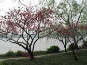 Hangzhou_Heaven_on_Earth_Day (3)