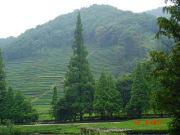 Hangzhou,_Heaven_on_Earth_Day (3)