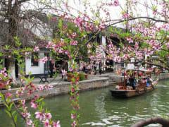 Zhujiajiao_and_Seven_Treasure_Town (2)