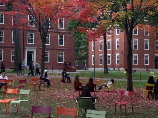 Harvard_Yard-crop
