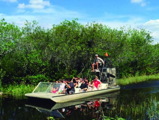Everglades National Park Guided Sightseeing Tour Airboat Ride And