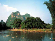 Yangshuo_Big Banyan  (1)