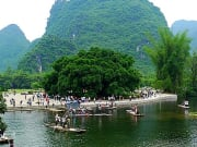 Yangshuo_Big Banyan  (3)