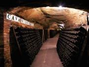 Codorniu Wine Cellars  (1)