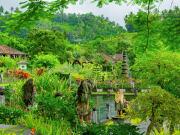 Taman Sukasada Garden_shutterstock (1)