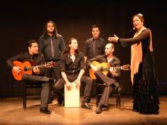 flamenco (3)