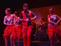 flamenco (9)