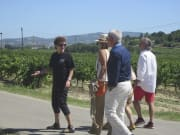 Barcelona Vineyards Tour and Human Tower Tradition (6)