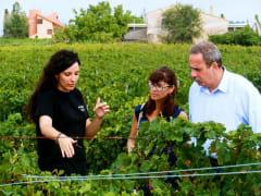 Barcelona Vineyards Tour and Human Tower Tradition (10)