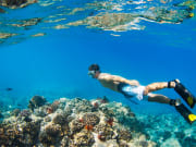 snorkeling_124761604
