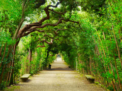 boboli garden_shutterstock (2)