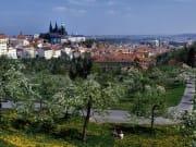 Czech Republic_Prague_mozart
