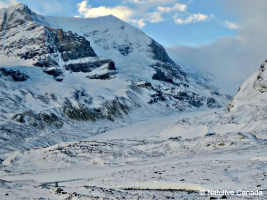 Columbia-Icefield-15