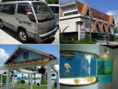 コロール島 (島内観光) | パラオの観光・オプショナルツアー専門 VELTRA(ベルトラ)