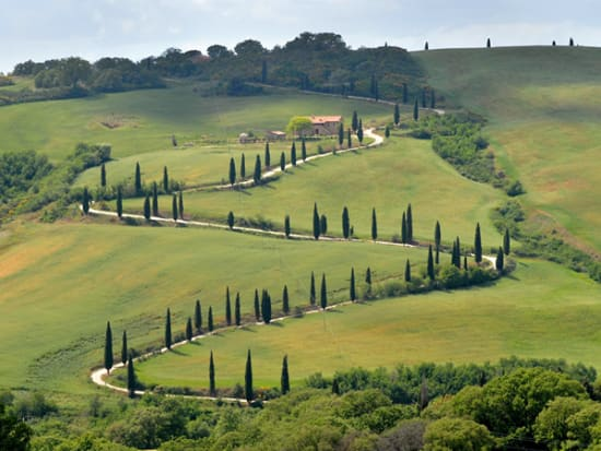 Italian Florence: Highlights Of Tuscany From Florence Day Trip With Siena