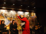 Flamenco Show with Drink at Tablao Villa Rosa