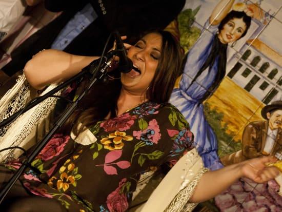 Flamenco Show with Drink at Tablao Villa Rosa  (6)