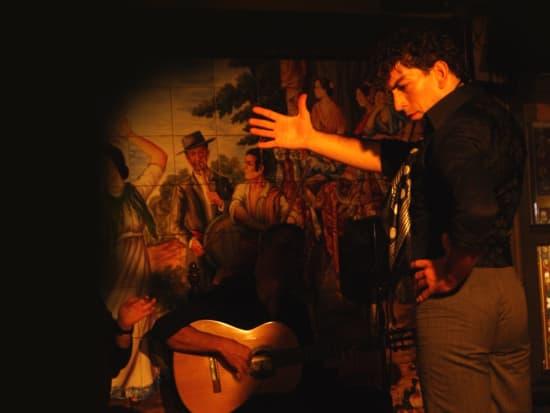 Flamenco Show with Drink at Tablao Villa Rosa  (2)