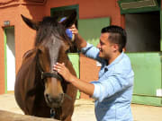Horseback riding in Natural Parks (7)