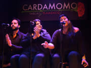 Cardamomo Tablao Flamenco Show (1)