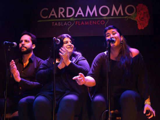 Cardamomo Tablao Flamenco Show (1)
