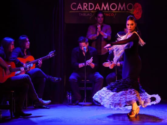 Cardamomo Tablao Flamenco Show (9)