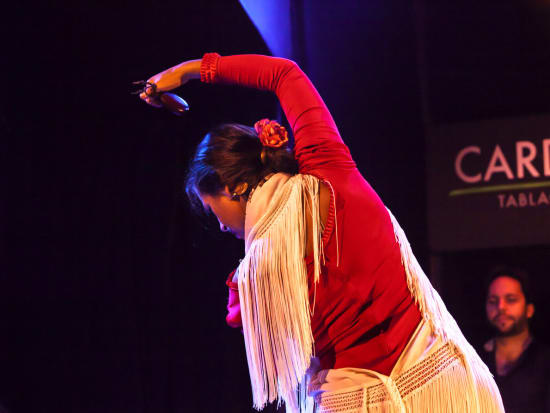 Cardamomo Tablao Flamenco Show (7)