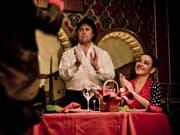 Torres Bermejas Flamenco 4