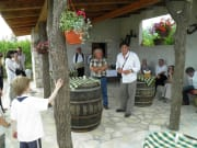 konavle_vineyards_excursion_(17)_124812