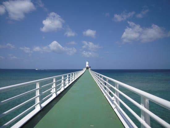 展望塔への橋