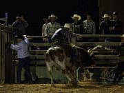 Real Rodeo Western Ranch Adventure