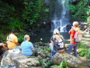 Hawaii_Big Island_ATV Outfitters_Waimea Falls