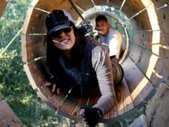 USA_Orlando_Gator Tours_Tree Trek Adventure
