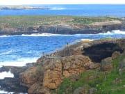 2493_Kangaroo_Island__CruiseCruise_f471f36ff23d737e3e9f7bb026762432