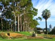 2500_Perth_Highlights__Morning_1feb0120ed37f0c2834343a44b5cb3b6_original