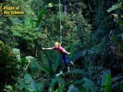 Flight of The GIbbon Chiangmai 5