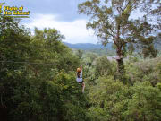 Flight of The GIbbon Khao Khoew 1