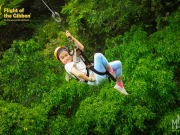 Flight of The GIbbon Khao Khoew 2