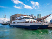 USA_Boston_Harbor Cruises_Whale Watch Cruise