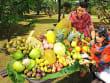 tropical fruit farm 3