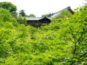 R 東福寺