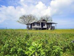 Terengganu countryside