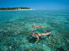coral-island5